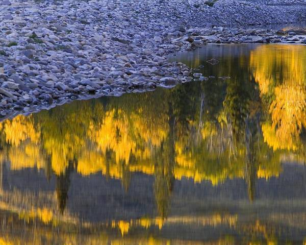 Autumn Poster featuring the photograph Water Reflections With A Rocky Shoreline by Carson Ganci