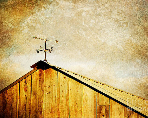 Weathervane Poster featuring the photograph Weathervane by Joan McCool