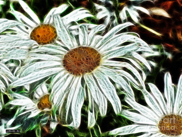 White Daisies Poster featuring the painting White Daisies by Methune Hively