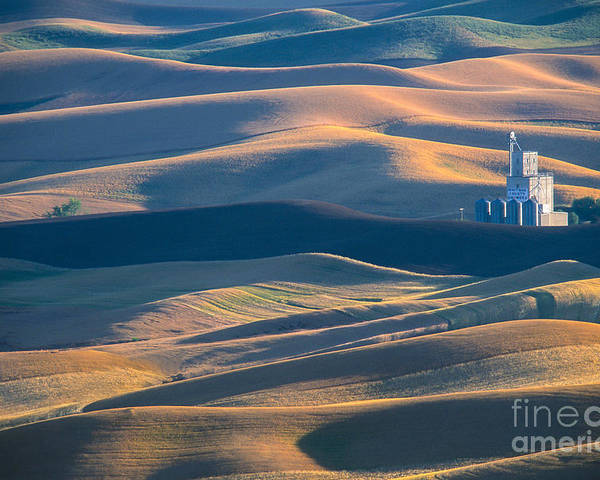 Palouse Poster featuring the photograph Whitman County Grain Silo by Sandra Bronstein