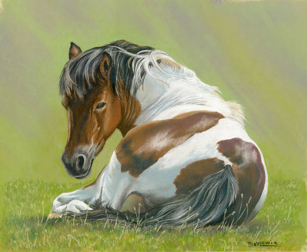 Horse Poster featuring the pastel Who You Lookin At by Bev Lewis