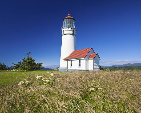 Lighthouse Poster featuring the photograph Wildflowers And Cape Blanco Lighthouse by Craig Tuttle