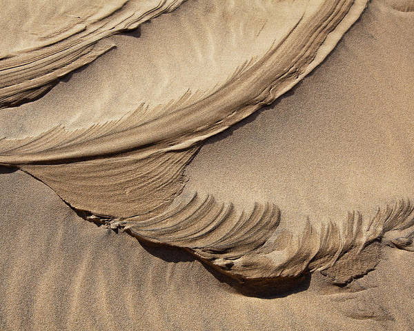 Sand Poster featuring the photograph Wind Creation by Kelley King