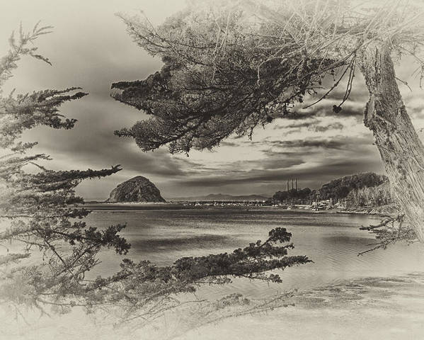 Morro Bay Poster featuring the photograph Windy Cove Bw by Beth Sargent