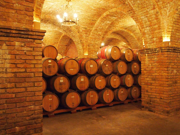 Winery Poster featuring the photograph Wine Barrels by George Ramondo