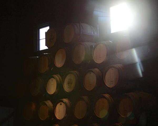 Wine Barrels Poster featuring the photograph Wine Barrels by Viktor Savchenko