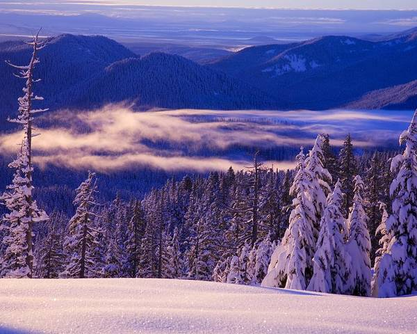 Beauty In Nature Poster featuring the photograph Winter Snow, Cascade Range, Oregon, Usa by Craig Tuttle