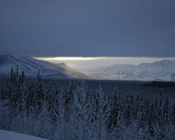 Snow Poster featuring the photograph Winter Sun Alaska by John Wolf