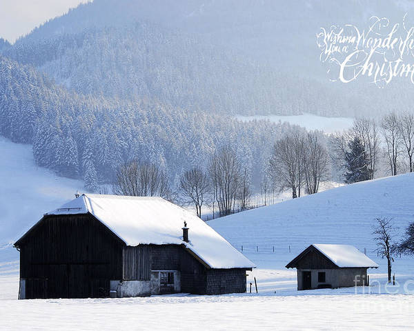 Winter Poster featuring the photograph Wishing You A Wonderful Christmas by Sabine Jacobs