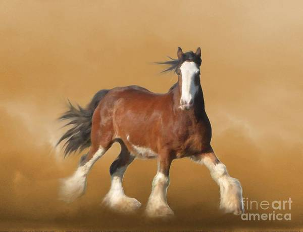 Clydesdale Poster featuring the painting ...with...fury He Devoureth The Ground by Angela Marks