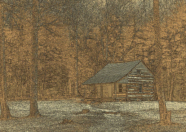Jim Finch Poster featuring the photograph Woodcut Cabin by Jim Finch