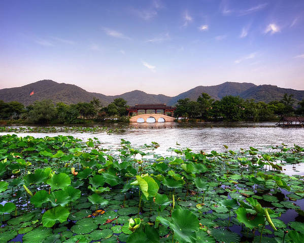 Horizontal Poster featuring the photograph Xianghu - Lotus (xiaoshan) by Andy Brandl