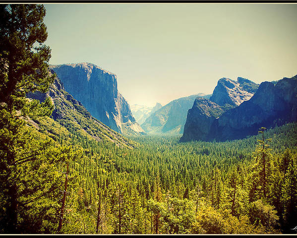 Tonal Poster featuring the photograph Yosemite Valley by Linda Olsen