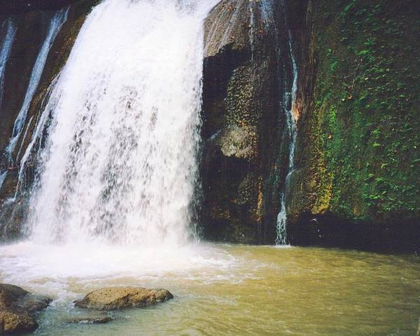 Jamaica Poster featuring the photograph YS Falls5 Jamaica by Debbie Levene