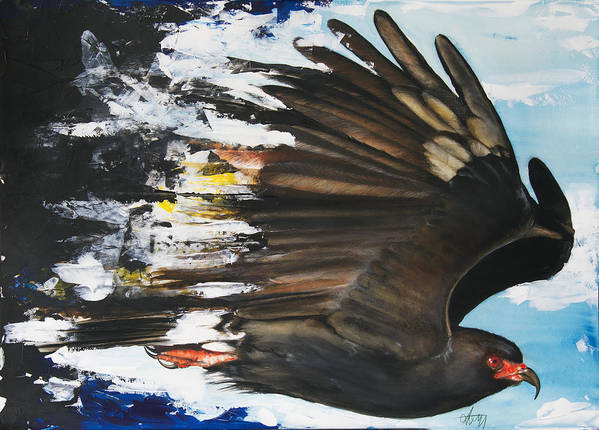Bird Poster featuring the mixed media Everglades Snail Kite by Anthony Burks Sr