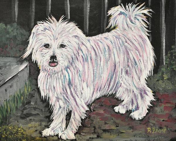 Dogs Poster featuring the painting Maltese Terrier Mix In Living Color by Reb Frost