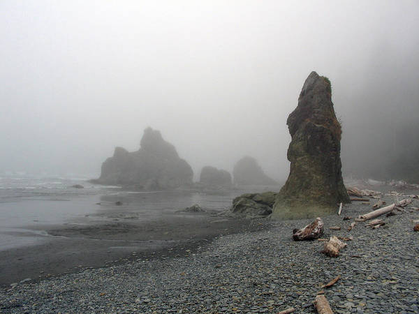 Landscape Poster featuring the photograph Pillar In Fog by Ty Nichols