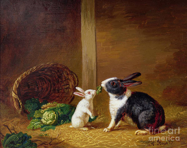 Two Poster featuring the painting Two Rabbits by H Baert