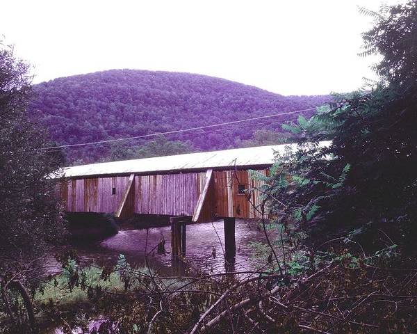 Bridge Poster featuring the photograph 10602-17 by Mike Davis