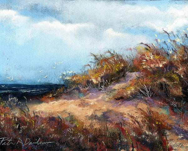 Pastel Poster featuring the pastel Beach Dune 2 by Peter R Davidson