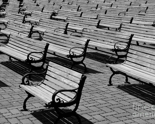 Bench Poster featuring the photograph Benches by Perry Webster