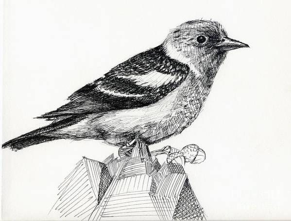 Bird Poster featuring the digital art Bird by Iglika Milcheva-Godfrey