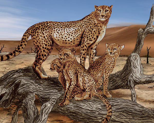 Cheetah Family Tree Poster featuring the drawing Cheetah Family Tree by Peter Piatt