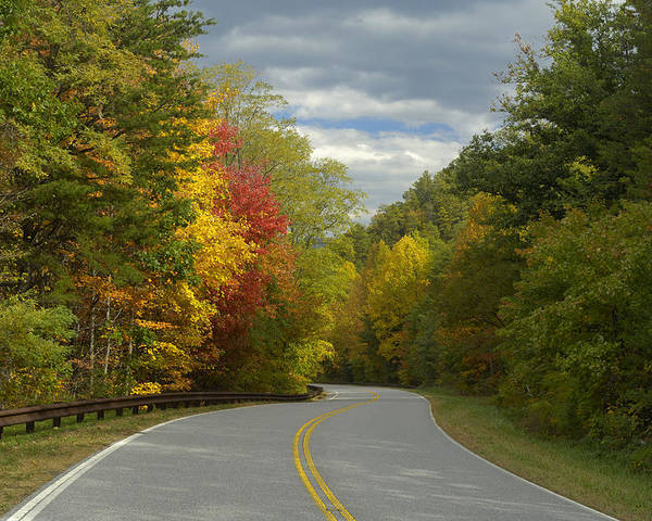 Road Poster featuring the photograph Cherohala Skyway In Autumn Color by Darrell Young
