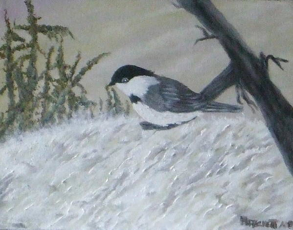 Chickadee Poster featuring the painting Chickadee by Rebecca Fitchett
