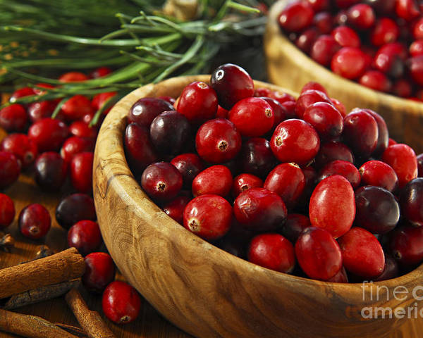 Cranberry Poster featuring the photograph Cranberries In Bowls by Elena Elisseeva