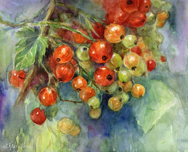 Currants Poster featuring the painting Currants Berries Painting by Svetlana Novikova