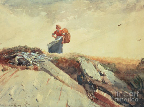 Down The Cliff Poster featuring the painting Down The Cliff by Winslow Homer