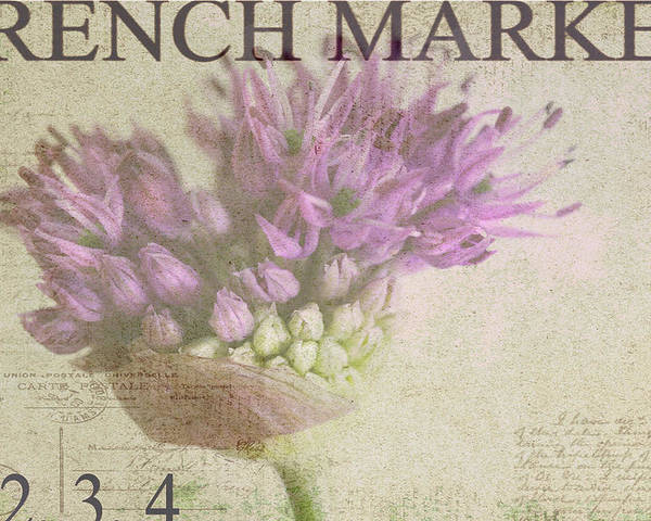 Purple Poster featuring the photograph French Market Series G by Rebecca Cozart