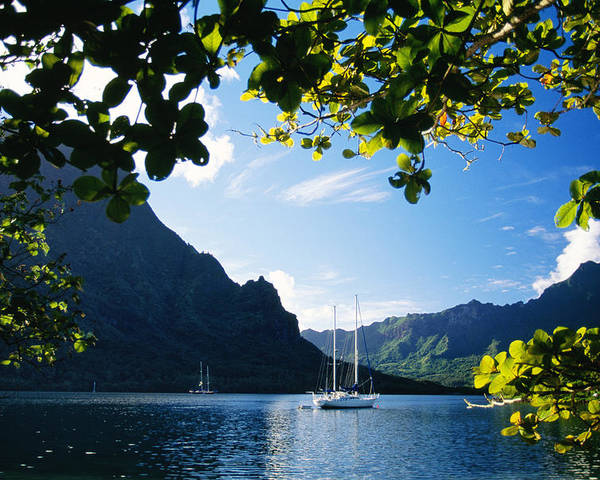 Across Poster featuring the photograph French Polynesia, Moorea by Dana Edmunds - Printscapes