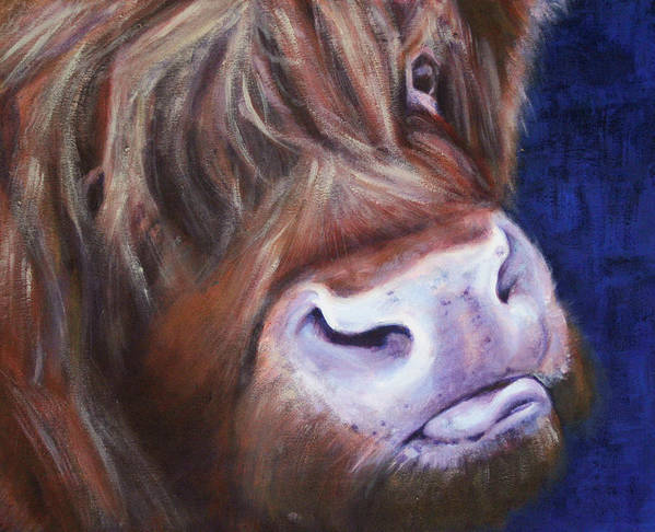 Highland Cow Poster featuring the painting Highland Cow by Fiona Jack