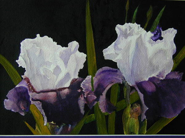 Flowers Poster featuring the painting Iris by Dwight Williams