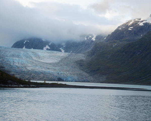 John Hopkins Poster featuring the photograph John Hopkins Glacier by Michael Peychich
