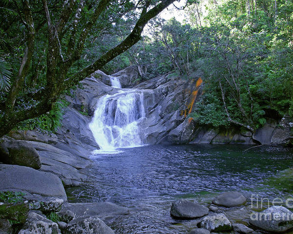 Tropical Poster featuring the photograph Josephine Falls And Tropical Pool by Kerryn Madsen- Pietsch