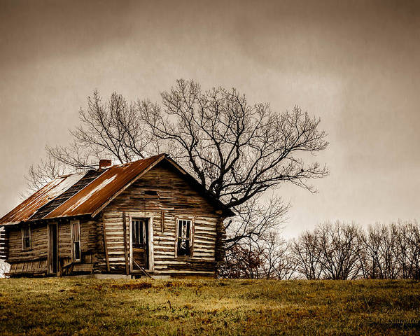 Log Cabin Poster featuring the photograph Log Cabin by Leroy McLaughlin