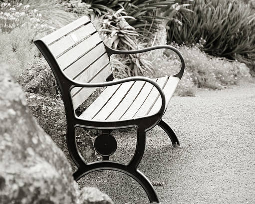 Bench Poster featuring the photograph Lone Bench In The Park. by Yurix Sardinelly