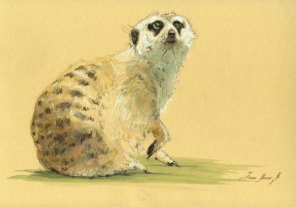 Meerkat Poster featuring the painting Meerkat Or Suricate Painting by Juan Bosco