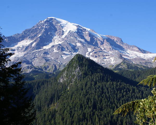 National Park Poster featuring the photograph Mount Rainier by Sonja Anderson