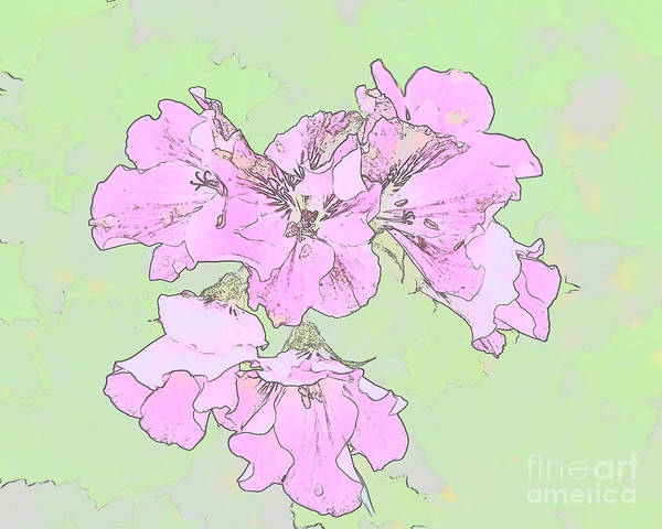 Flowers Poster featuring the photograph Purple And Green by Ronald Grogan