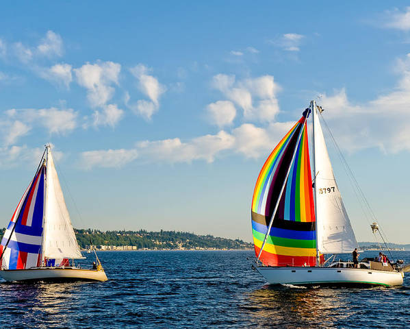 Seattle Poster featuring the photograph Rainbow Sails by Tom Dowd