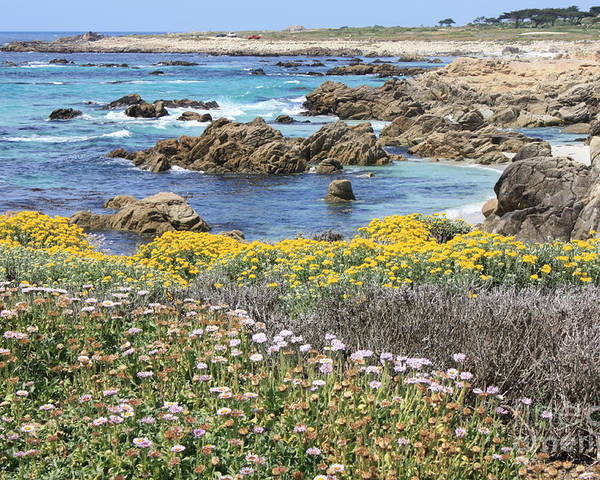 California Poster featuring the photograph Rocky Surf With Wildflowers by Carol Groenen