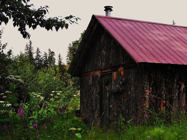 Homer Alaska Poster featuring the photograph Rustic Homestead by Lori Mahaffey