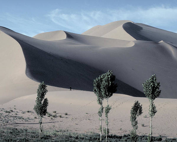 Giant Poster featuring the photograph Sand Dunes In The Gobi Desert by Carl Purcell