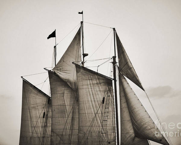 Tall Ship Poster featuring the photograph Schooner Pride Tall Ship Charleston Sc by Dustin K Ryan