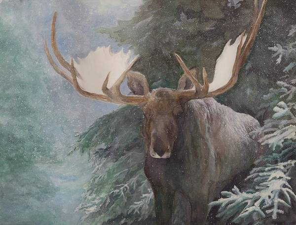 Bull Moose Poster featuring the painting Sheltered By The Forest by Nonie Wideman