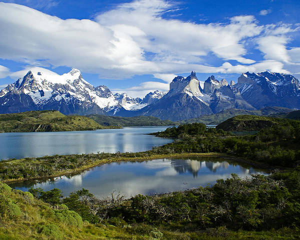 Patagonia Poster featuring the photograph Springtime In Patagonia by Michele Burgess